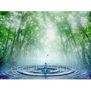 Отчет 2 ТП-водхоз (Сведения об использовании воды) – годовой фото