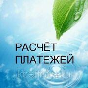Расчет платы негативного воздействия на окружающую среду (НВОС) фото