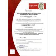 OHSAS 18001:2007 фото