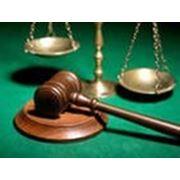 Подбор персонала для юриспруденции: юрист, адвокат фото