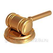 Юридическое обслуживание организаций фото
