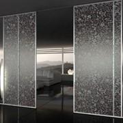 Стеклянные раздвижные двери фото