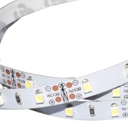 Лента RT6-3528-180 24V Cool 3x (900 LED) фото