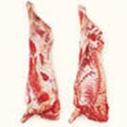 Мясо говядины п/туши (быки 110+) пр-ва РФ фото