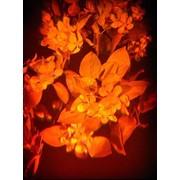 Голограмма художественная Яблоневый цвет фото
