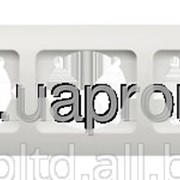 """Рамка ZIRVE 5-а """"сосна"""" горизонтальная 501-0801-250 фото"""