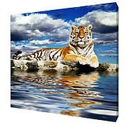 Картина на холсте 50х50 LK304 фото