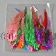 Перья цветные 5-14см 30шт 570428 фото