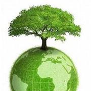Екологічна експертиза фото