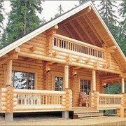 Проект дома из дерева Д0051 фото