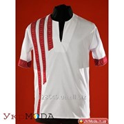 Вышиванка мужская с коротким рукавом, футболка вышитая (chs-18-13) фото