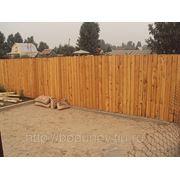 Забор из кедра фото