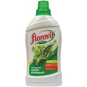 """Удобрение """"Для лиственных растений"""" (FLOROVIT), 1 л фото"""