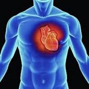 Лечение у кардиолога, Кардиолог в Астане фото