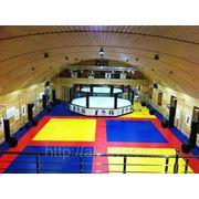 Строительство бескаркасного спортивного зала фото