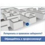 Регистрация предприятий в Беларуси фото