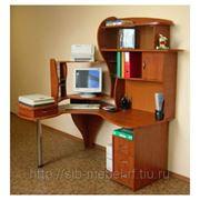 Компьютерный стол №33 фото
