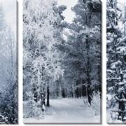 Модульная картина Зимний лес , Неизвестен фото