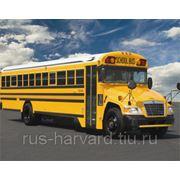 Школьный автобус фото