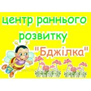 Академгородок Бджілка центр развития фото