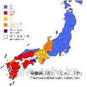 Японский язык для всех фото