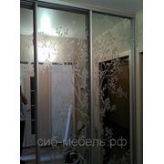 Шкафы для гардеробной комнаты №7 фото