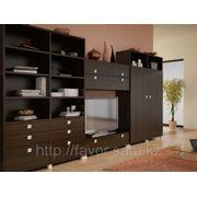Мебель для гостиной комнаты! фото