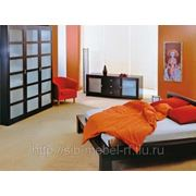 Мебель для спальни № 9 фото