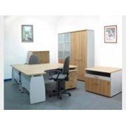 Мебель в кабинет фото