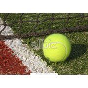 Теннисный корт фото