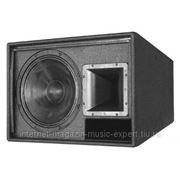 Martin Audio AM12 АС 12-+1- 300Вт AES 1200Вт пик. Цвет - черный фото