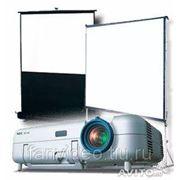 Аренда (прокат) экрана для проектора фото