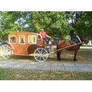 Аренда карет и лошадей фото