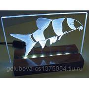 Лазерная гравировка неметаллов. фото
