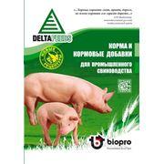 БМВД для поросят и свиней — «ПРОСТО ДОБАВЬ ЗЕРНА!» фото