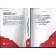 Комментарий к Таможенному кодексу Таможенного союза. -М.:Проспект,2011. фото
