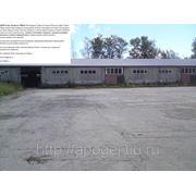 Сдам отапливаемый склад 2000м2 фото