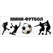 Крытые площадки для Мини-футбола фото