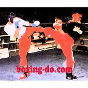 Индивидуальные тренировки бокс, кикбоксинг. фото