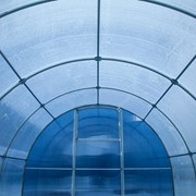 Теплица Сибирская Премиум, КРАБ труба 40х20 4метровая шаг 67см фото