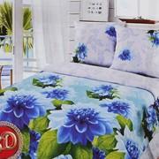 Комплект постельного белья бязь Герцог фото