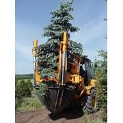 Optimal 760, купить Optimal 760 в Алматы, заказать Optimal 760 в Алматы, заказать спецтехнику для пересадки деревьев в Алматы, спецтехника для пересадки деревьев в Алматы фото
