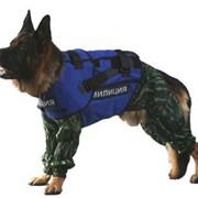 Бронежилет для собак. Собачий бронежилет. Бронежилет для служебных собак.Бронежилет для охотничьей собаки. Бронежилет собачий для разминирования. Бронежилет кинологический. фото