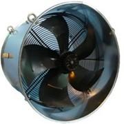 Циркуляционный вентилятор для птичников фото
