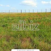 Аренда земельных участков фото