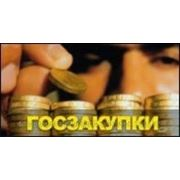 Регламентированные закупки в 2013 году. Изменения и новые процедуры в закупках фото