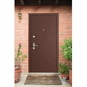 Полимерная порошковая покраска металлических бронированных дверей фото