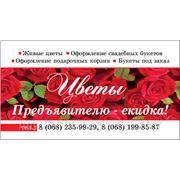 Визитки 1000 шт недорого в Днепропетровске фото