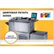 Цифровая печать визиток и карманных календарей фото