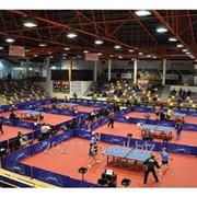 Ограждение для игры в настольный теннис Stag Arena для соревнований
